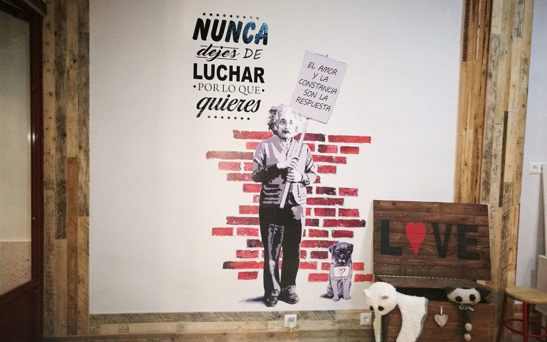 """Fundación Cadisla recibe el premio """"Workin 2017"""", de Fundación Caja Rural de Castilla-La Mancha"""