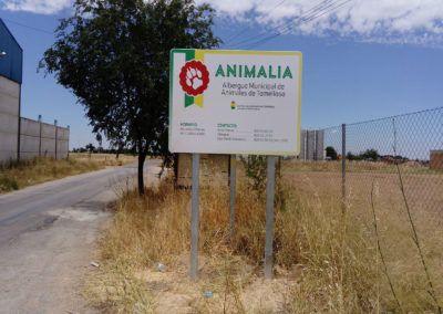 Albergue Animales