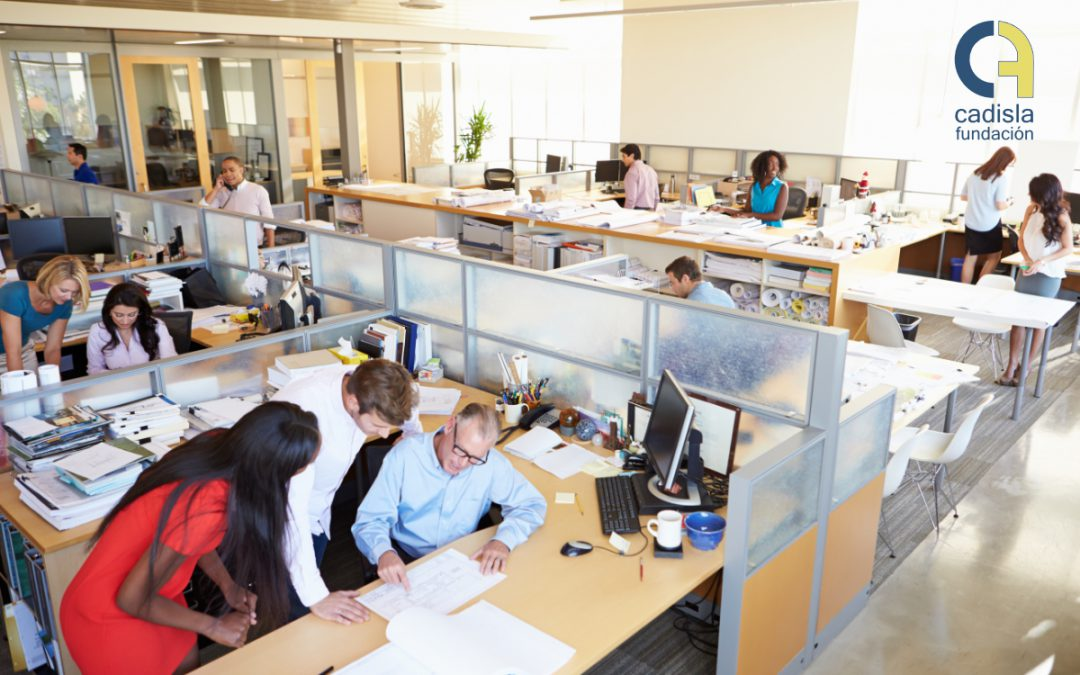 Plan Extraordinario de Empleo de la Oficina de Vida Inclusiva